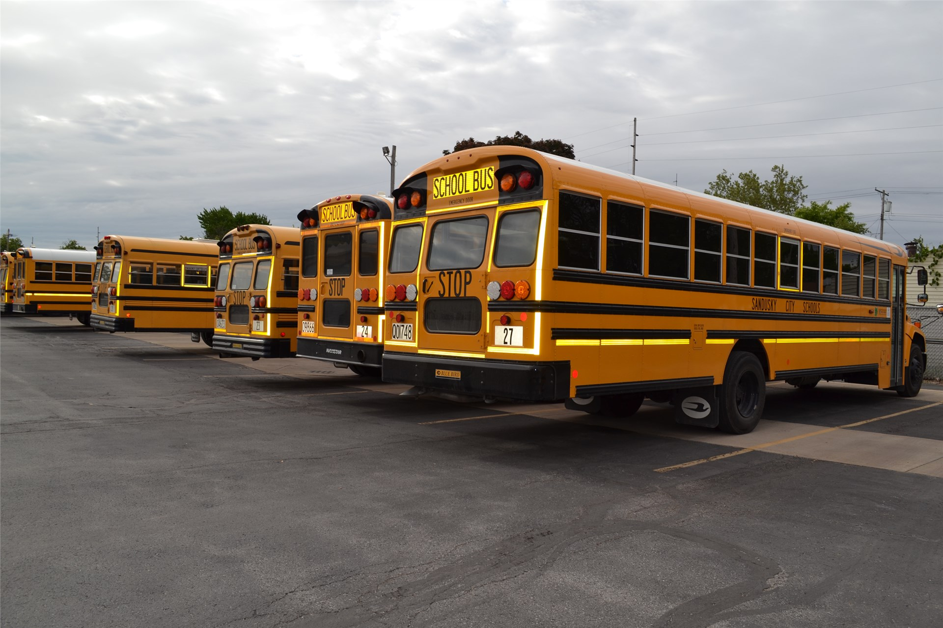 Photo of Buses Lined Up